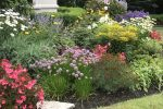 naperville-hinsdale-dupage-gardeners-gardening-service-_1098